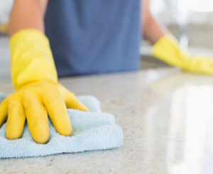 House Professional Cleaning Service